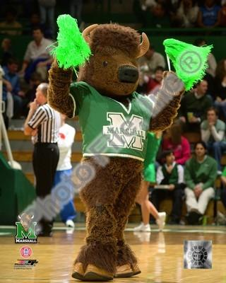 Marshall Thundering Herd Mascot 8x10 Photo