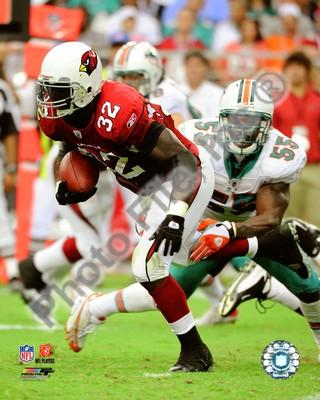 Edgerrin James Arizona Cardinals Rushing 8x10 Photo